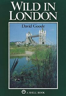 Wild-in-London